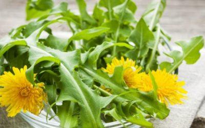Naturlig mat, ville planter og oppskrifter